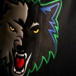 NBA – Les Timberwolves ont dévoilé leur maillot « Classic »