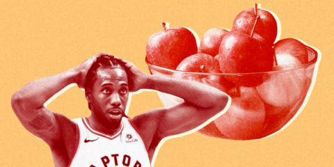 Raptors joueurs NBA chat meal