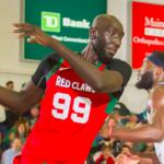 NBA/G League – Tacko Fall frôle son premier triple-double, les internautes en folie