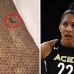 NBA – Les conditions insalubres de la bulle WNBA font scandale !