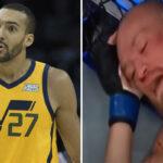 NBA – Gobert et plusieurs stars réagissent au KO de Conor McGregor !