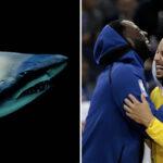 NBA – « Les requins ne font que chasser, c'est comme ça que je vis ma vie »
