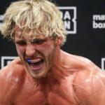 Fight – Logan Paul tout proche d'affronter une superstar UFC ? Un indice enflamme la toile !