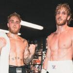 Fight – « Yo Jake et Logan Paul, moi et mon frère on va vous démonter ! »