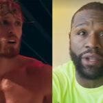 Fight – Logan Paul envoie un ultime message à Mayweather avant le combat !