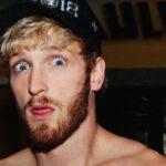 Fight – Le clan d'une star UFC dégomme Logan Paul… et tape là où ça fait mal !